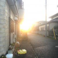 雨で潤う船橋・鎌ケ谷