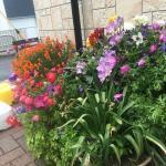 会社の花壇